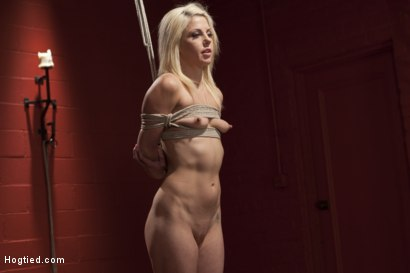 Photo number 6 from Little Titties Double Stuffed shot for Hogtied on Kink.com. Featuring Holly Hanna in hardcore BDSM & Fetish porn.