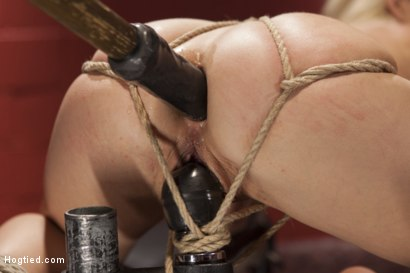 Photo number 11 from Little Titties Double Stuffed shot for Hogtied on Kink.com. Featuring Holly Hanna in hardcore BDSM & Fetish porn.