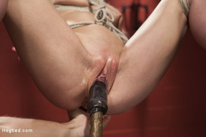 Photo number 9 from Little Titties Double Stuffed shot for Hogtied on Kink.com. Featuring Holly Hanna in hardcore BDSM & Fetish porn.