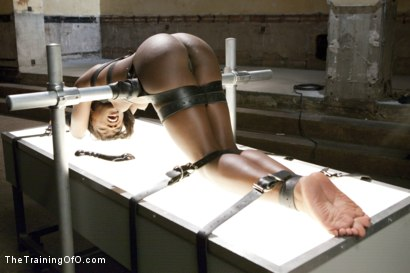 Photo number 5 from Orgasm Denial and Control - Final Day shot for The Training Of O on Kink.com. Featuring Ana Foxxx and Owen Gray in hardcore BDSM & Fetish porn.