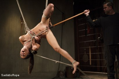Photo number 1 from Totally Immobilized and Helpless shot for Sadistic Rope on Kink.com. Featuring Lyla Storm in hardcore BDSM & Fetish porn.