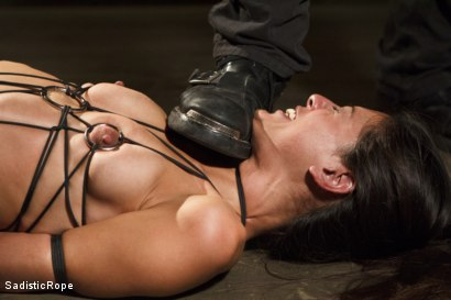 Photo number 3 from Totally Immobilized and Helpless shot for Sadistic Rope on Kink.com. Featuring Lyla Storm in hardcore BDSM & Fetish porn.