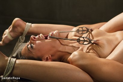 Photo number 6 from Totally Immobilized and Helpless shot for Sadistic Rope on Kink.com. Featuring Lyla Storm in hardcore BDSM & Fetish porn.