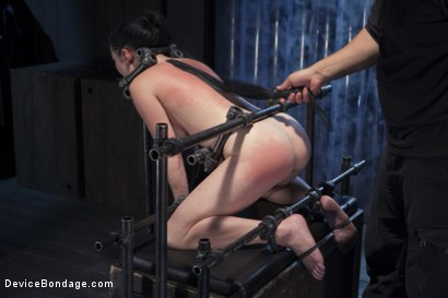 Photo number 15 from Ask, and you shall recieve shot for Device Bondage on Kink.com. Featuring Orlando and Veruca James in hardcore BDSM & Fetish porn.