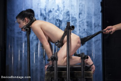 Photo number 7 from Ask, and you shall recieve shot for Device Bondage on Kink.com. Featuring Orlando and Veruca James in hardcore BDSM & Fetish porn.