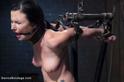 Photo number 6 from Ask, and you shall recieve shot for Device Bondage on Kink.com. Featuring Orlando and Veruca James in hardcore BDSM & Fetish porn.