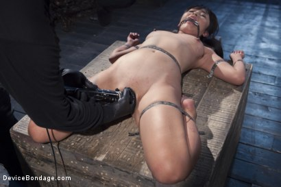 Photo number 15 from No Escape   shot for Device Bondage on Kink.com. Featuring Marica Hase and Orlando in hardcore BDSM & Fetish porn.