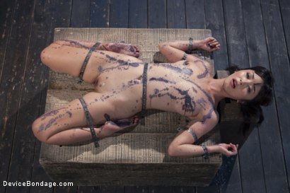Photo number 5 from No Escape   shot for Device Bondage on Kink.com. Featuring Marica Hase and Orlando in hardcore BDSM & Fetish porn.
