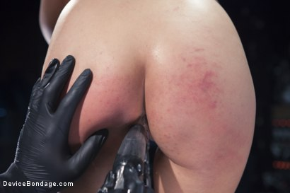 Photo number 8 from No Escape   shot for Device Bondage on Kink.com. Featuring Marica Hase and Orlando in hardcore BDSM & Fetish porn.