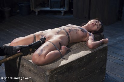 Photo number 12 from No Escape   shot for Device Bondage on Kink.com. Featuring Marica Hase and Orlando in hardcore BDSM & Fetish porn.