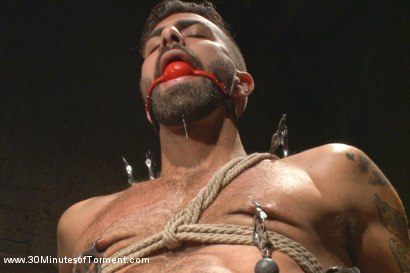 Photo number 8 from Super Hunk Adam Ramzi - Tormented and Ass Violated shot for 30 Minutes of Torment on Kink.com. Featuring Adam Ramzi in hardcore BDSM & Fetish porn.