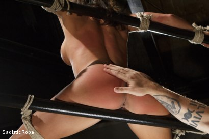 Photo number 9 from Something Familiar shot for Sadistic Rope on Kink.com. Featuring Ariel X in hardcore BDSM & Fetish porn.