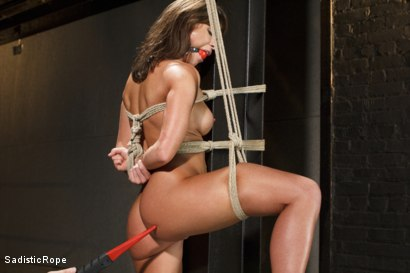 Photo number 13 from Something Familiar shot for Sadistic Rope on Kink.com. Featuring Ariel X in hardcore BDSM & Fetish porn.