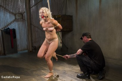 Photo number 5 from One to Remember-Squirting from the Pain shot for Sadistic Rope on Kink.com. Featuring Dylan Ryan in hardcore BDSM & Fetish porn.