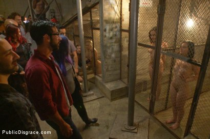 Photo number 1 from Ass pounding orgy with 4 hot sluts shot for Public Disgrace on Kink.com. Featuring Roxanne Rae and Tommy Pistol in hardcore BDSM & Fetish porn.