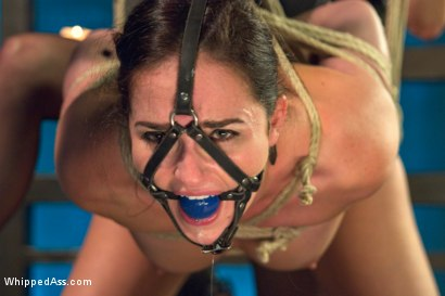 Photo number 5 from Lesbian Dungeon shot for Whipped Ass on Kink.com. Featuring Maitresse Madeline Marlowe  and Bianca Breeze in hardcore BDSM & Fetish porn.