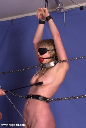 Photo number 11 from Leila shot for Hogtied on Kink.com. Featuring Leila in hardcore BDSM & Fetish porn.