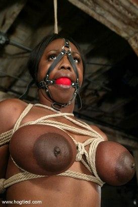 Photo number 11 from Jada Fire shot for Hogtied on Kink.com. Featuring Jada Fire in hardcore BDSM & Fetish porn.