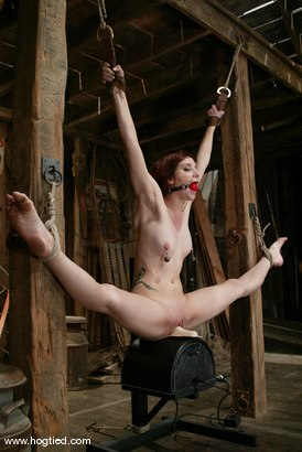 Photo number 4 from Pinky Lee shot for Hogtied on Kink.com. Featuring Pinky Lee in hardcore BDSM & Fetish porn.