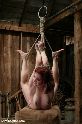 Photo number 13 from Pinky Lee shot for Hogtied on Kink.com. Featuring Pinky Lee in hardcore BDSM & Fetish porn.