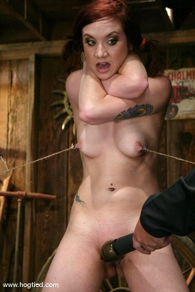 Photo number 3 from Pinky Lee shot for Hogtied on Kink.com. Featuring Pinky Lee in hardcore BDSM & Fetish porn.