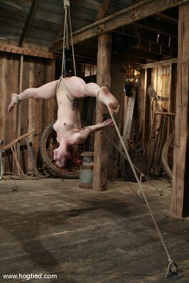 Photo number 10 from Pinky Lee shot for Hogtied on Kink.com. Featuring Pinky Lee in hardcore BDSM & Fetish porn.