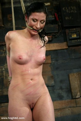 Photo number 3 from Ariel X shot for Hogtied on Kink.com. Featuring Ariel X in hardcore BDSM & Fetish porn.