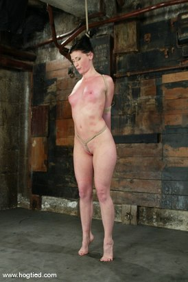 Photo number 14 from Ariel X shot for Hogtied on Kink.com. Featuring Ariel X in hardcore BDSM & Fetish porn.
