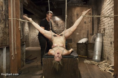 Photo number 13 from Busty Blonde Babe Gets Molested shot for Hogtied on Kink.com. Featuring Winnie Rider in hardcore BDSM & Fetish porn.