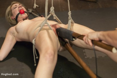 Photo number 3 from Busty Blonde Babe Gets Molested shot for Hogtied on Kink.com. Featuring Winnie Rider in hardcore BDSM & Fetish porn.