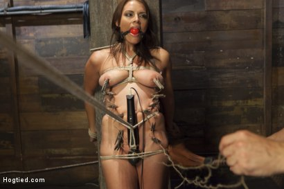 Photo number 5 from All Natural Babe in Heavy Bondage shot for Hogtied on Kink.com. Featuring Kayla West in hardcore BDSM & Fetish porn.