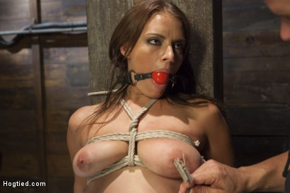 Photo number 3 from All Natural Babe in Heavy Bondage shot for Hogtied on Kink.com. Featuring Kayla West in hardcore BDSM & Fetish porn.