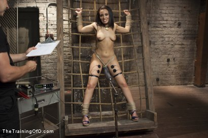 Photo number 1 from Training Gabbi shot for The Training Of O on Kink.com. Featuring Owen Gray and Gabriella Paltrova in hardcore BDSM & Fetish porn.