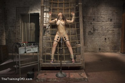 Photo number 4 from Training Gabbi shot for The Training Of O on Kink.com. Featuring Owen Gray and Gabriella Paltrova in hardcore BDSM & Fetish porn.