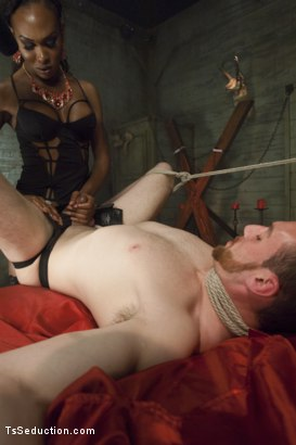 Photo number 6 from Kayla Biggs wakes from Her Vampire Sleep Cock, Ass and Cum Hungry! shot for TS Seduction on Kink.com. Featuring Kayla Biggs and Jimmy Bullet in hardcore BDSM & Fetish porn.