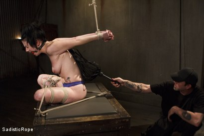 Photo number 6 from Predicaments shot for Sadistic Rope on Kink.com. Featuring Veruca James in hardcore BDSM & Fetish porn.