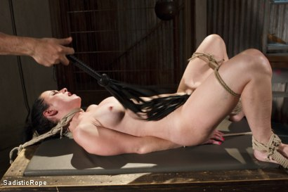 Photo number 7 from Predicaments shot for Sadistic Rope on Kink.com. Featuring Veruca James in hardcore BDSM & Fetish porn.