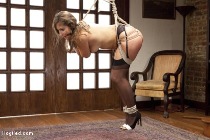 Photo number 12 from Grow a Pair shot for Hogtied on Kink.com. Featuring Dani Daniels in hardcore BDSM & Fetish porn.