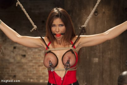 Photo number 4 from Big Tit MILF Syren de Mer Gets It Just the Way She Likes It shot for Hogtied on Kink.com. Featuring Syren de Mer in hardcore BDSM & Fetish porn.