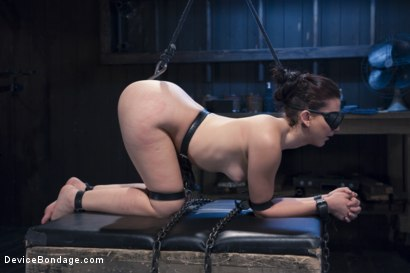Photo number 12 from Finding Her Way shot for Device Bondage on Kink.com. Featuring Mandy Muse and Orlando in hardcore BDSM & Fetish porn.