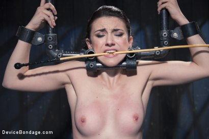 Photo number 6 from Finding Her Way shot for Device Bondage on Kink.com. Featuring Mandy Muse and Orlando in hardcore BDSM & Fetish porn.