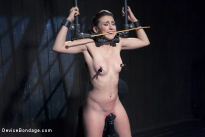 Photo number 7 from Finding Her Way shot for Device Bondage on Kink.com. Featuring Mandy Muse and Orlando in hardcore BDSM & Fetish porn.