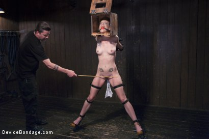 Photo number 2 from Intensity is a Must! shot for Device Bondage on Kink.com. Featuring Jeze Belle in hardcore BDSM & Fetish porn.