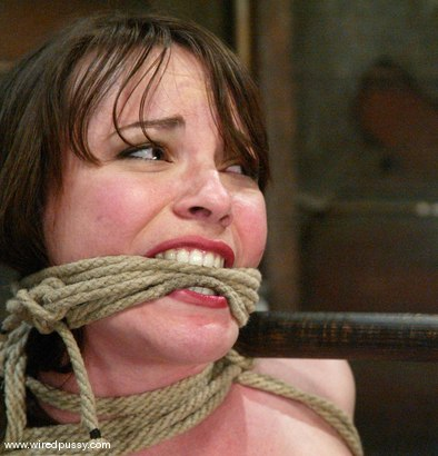 Photo number 8 from Princess Donna Dolore and Dana DeArmond shot for Wired Pussy on Kink.com. Featuring Princess Donna Dolore and Dana DeArmond in hardcore BDSM & Fetish porn.