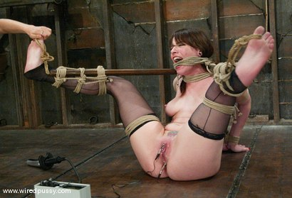 Photo number 9 from Princess Donna Dolore and Dana DeArmond shot for Wired Pussy on Kink.com. Featuring Princess Donna Dolore and Dana DeArmond in hardcore BDSM & Fetish porn.