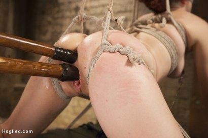 Photo number 13 from Double Penetration Predicament shot for Hogtied on Kink.com. Featuring Ingrid Mouth in hardcore BDSM & Fetish porn.