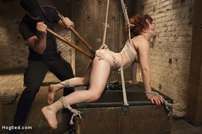 Photo number 9 from Double Penetration Predicament shot for Hogtied on Kink.com. Featuring Ingrid Mouth in hardcore BDSM & Fetish porn.