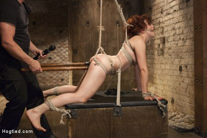 Photo number 12 from Double Penetration Predicament shot for Hogtied on Kink.com. Featuring Ingrid Mouth in hardcore BDSM & Fetish porn.