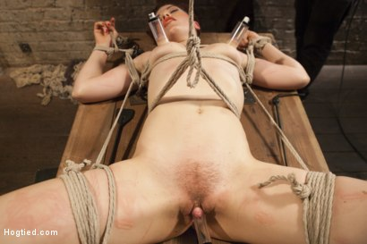 Photo number 7 from Double Penetration Predicament shot for Hogtied on Kink.com. Featuring Ingrid Mouth in hardcore BDSM & Fetish porn.