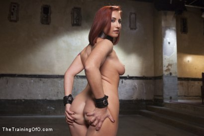 Photo number 1 from Virgin Anal Fuck: Sophia's Graduation Day shot for The Training Of O on Kink.com. Featuring Sophia Locke and Owen Gray in hardcore BDSM & Fetish porn.